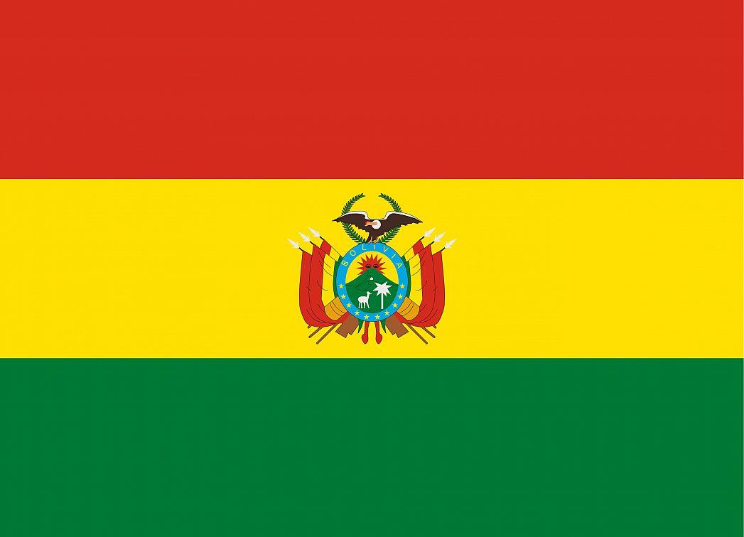 Bolivias Flag Graphicmaps